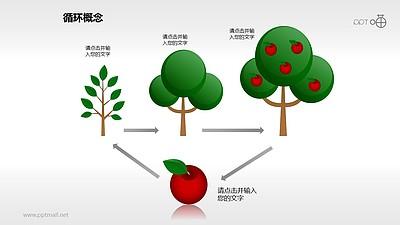 周而复始的植物繁衍生长循环图PPT模板