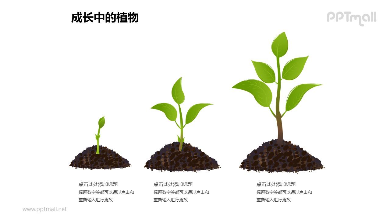 成长中的植物之植物成长三部曲图形素材下载