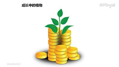 成长中的植物之金币中的植物图形素材下载