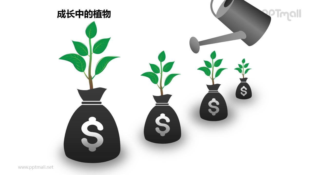 成长中的植物之4部分浇水中的植物图形素材下载