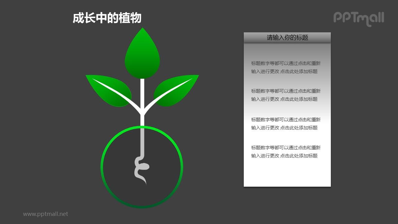 成长中的详细剖析植物图形素材下载
