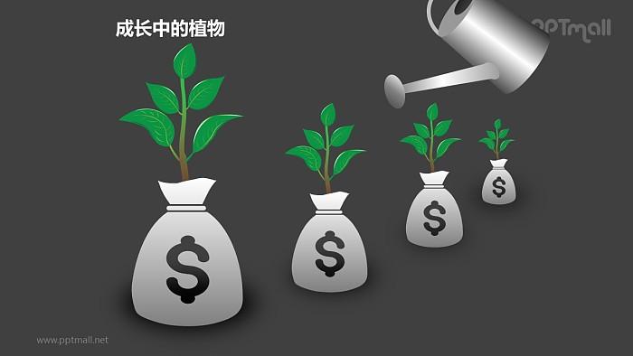 成长中的植物之4部分浇水中的植物图形素材下载_幻灯片预览图2