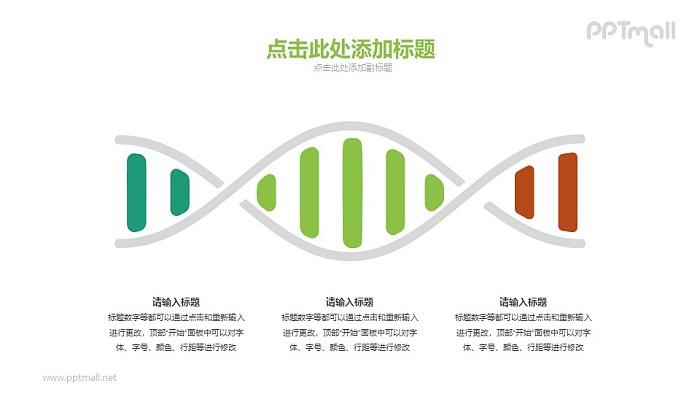 DNAPPT模板下载