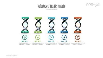 5组DNA基因序列PPT模板下载