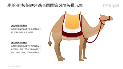 骆驼-阿拉伯联合酋长国国家风情PPT图像素材下载