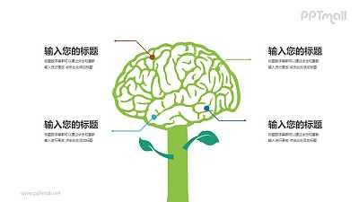 医学生物大脑知识解析PPT模板图示下载