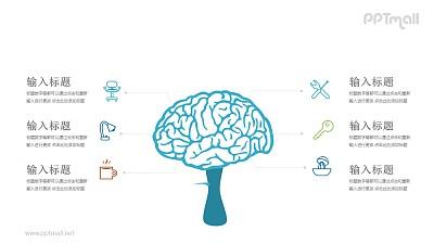 医学生物对大脑功能的分析PPT模板图示下载